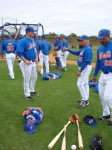 Terry Collins talks to Matt Harvey at Mets camp.